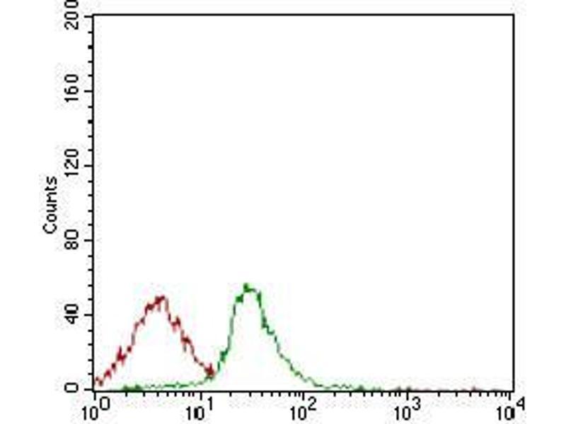Image no. 3 for anti-HLA-DR-gamma (CD74) (AA 1-106) antibody (ABIN1724870)