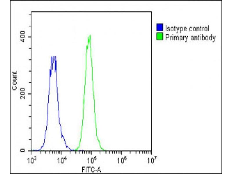Flow Cytometry (FACS) image for anti-Insulin-Like Growth Factor Binding Protein 4 (IGFBP4) (AA 66-92), (N-Term) antibody (ABIN390928)