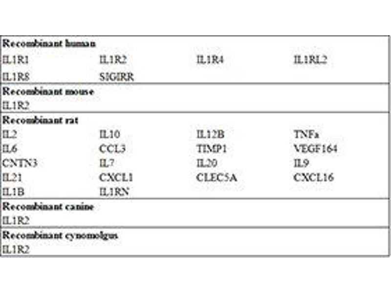 Interleukin 1 Receptor, Type II (IL1R2) ELISA Kit (2)