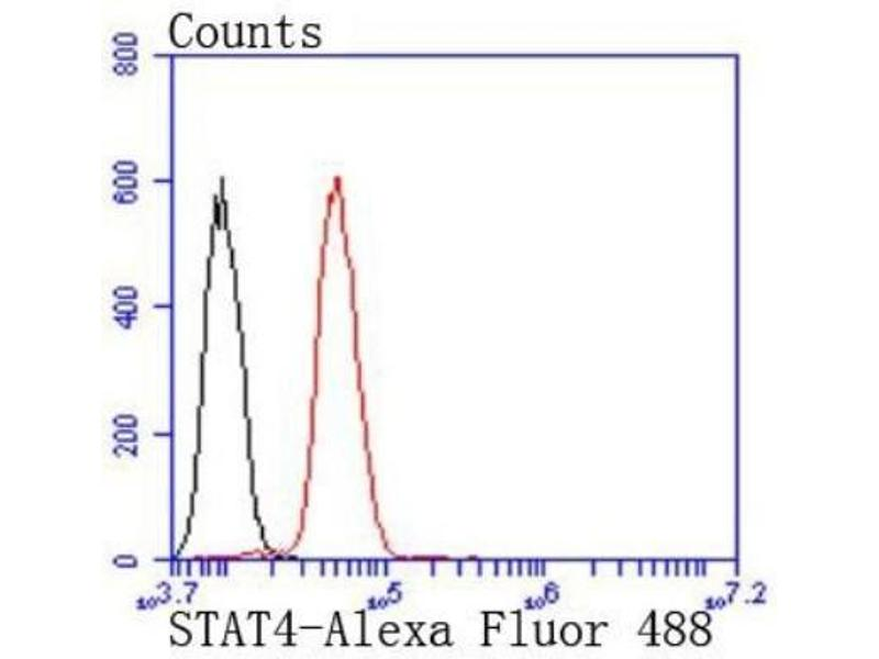 Flow Cytometry (FACS) image for anti-Signal Transducer and Activator of Transcription 4 (STAT4) (C-Term) antibody (ABIN5947592)