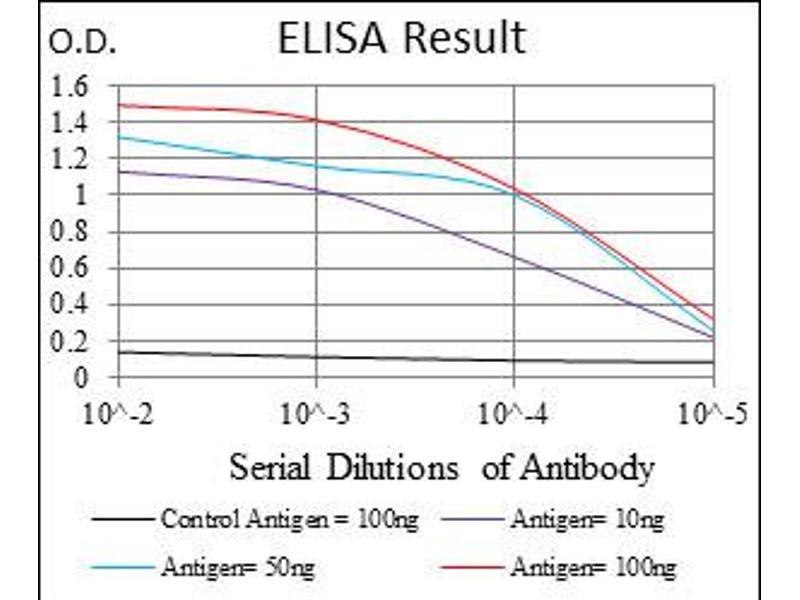 ELISA image for anti-IL1B antibody (Interleukin 1, beta) (ABIN1107772)