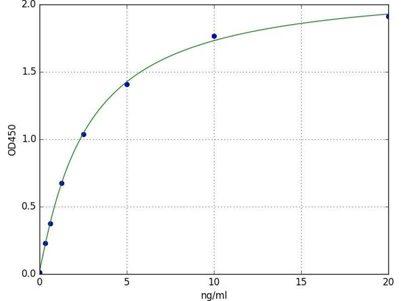Retinoid X Receptor, gamma (RXRG) ELISA Kit