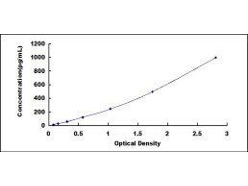Kallikrein-Related Peptidase 13 (KLK13) ELISA Kit