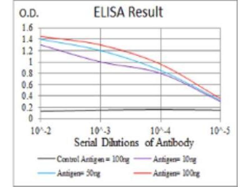 ELISA image for anti-Luteinizing Hormone/choriogonadotropin Receptor (LHCGR) antibody (ABIN4229675)