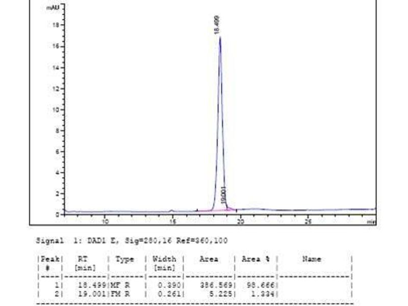 Image no. 1 for Erythropoietin (EPO) (AA 28-193) (Active) protein (ABIN987828)
