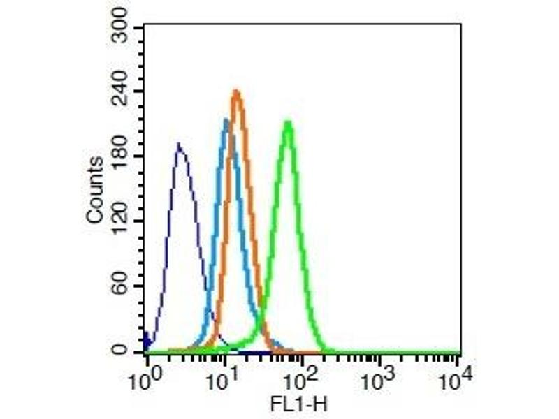 Flow Cytometry (FACS) image for anti-ATP-Binding Cassette, Sub-Family B (MDR/TAP), Member 1B (ABCB1B) (AA 1-43) Antikörper (ABIN670161)