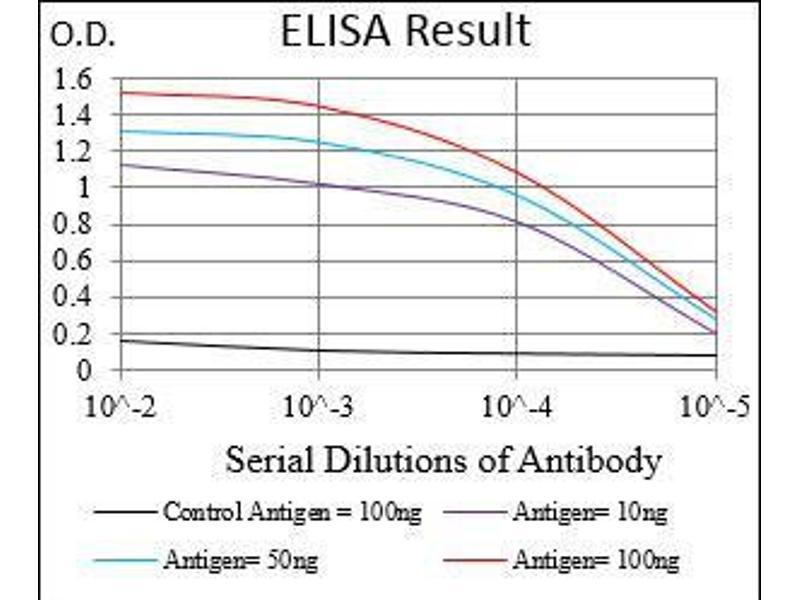ELISA image for anti-Ribosomal Protein S6 Kinase, 90kDa, Polypeptide 2 (RPS6KA2) (AA 415-734) antibody (ABIN4881243)