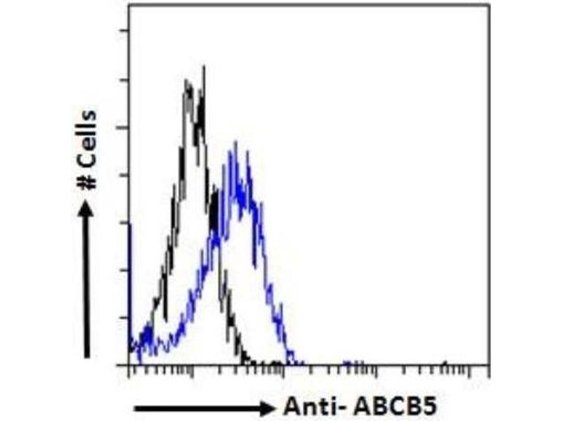Flow Cytometry (FACS) image for anti-ATP-Binding Cassette, Sub-Family B (MDR/TAP), Member 5 (ABCB5) antibody (ABIN408633)