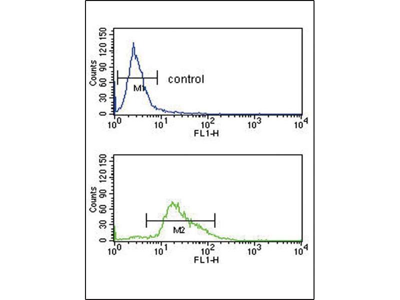 Flow Cytometry (FACS) image for anti-PLG antibody (Plasminogen) (C-Term) (ABIN2492985)