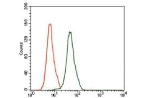 Flow Cytometry (FACS) image for anti-Mitogen-Activated Protein Kinase 8 (MAPK8) antibody (ABIN4327963)
