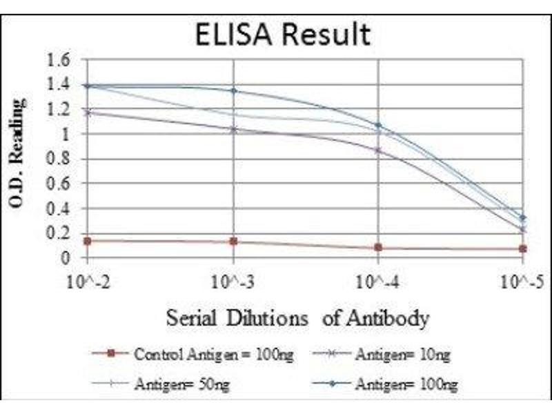 ELISA image for anti-Caspase 8, Apoptosis-Related Cysteine Peptidase (CASP8) antibody (ABIN4288173)