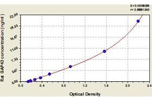 Image no. 1 for Growth Associated Protein 43 (GAP43) ELISA Kit (ABIN6973809)
