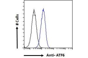 Image no. 4 for anti-Activating Transcription Factor 6 (ATF6) (AA 437-449) antibody (ABIN1590087)