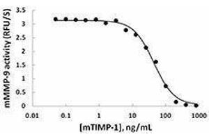 ELISA image for TIMP Metallopeptidase Inhibitor 1 (TIMP1) (AA 27-205), (C-Term) (Active) protein (ABIN2666718)