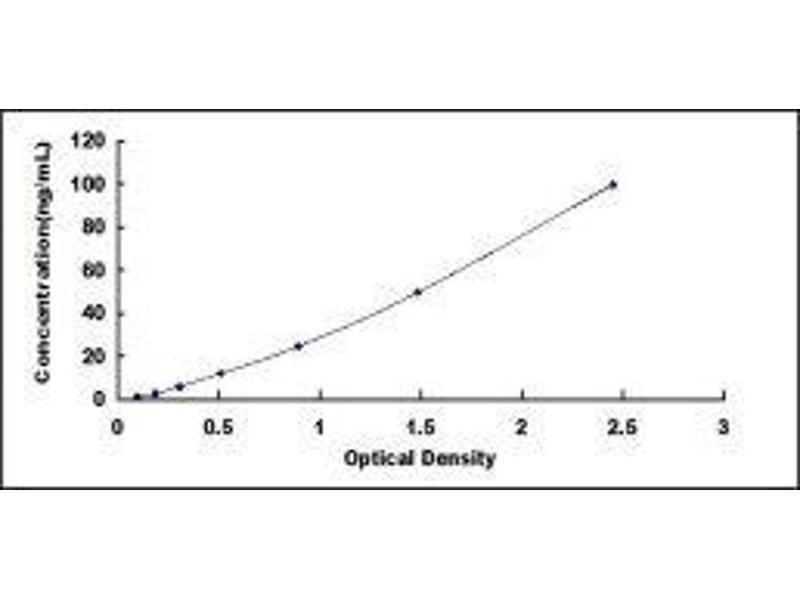 Potassium Inwardly-Rectifying Channel, Subfamily J, Member 10 (KCNJ10) ELISA Kit