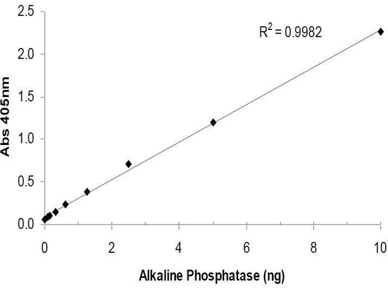 isolation alkaline phosphatase thesis Skip to main content sciencedirect journals books register sign in help.