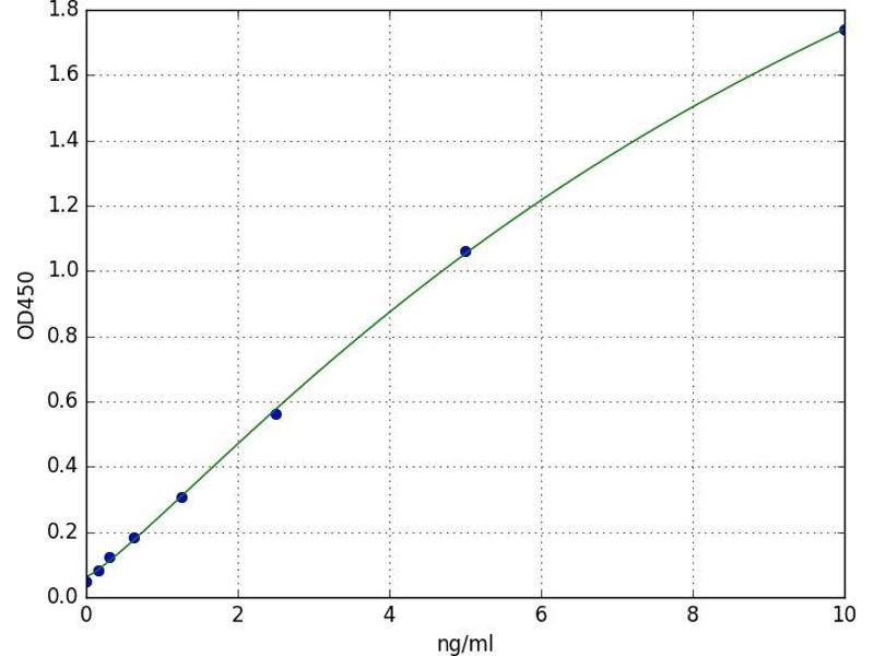 Transcription Factor AP-2 beta (Activating Enhancer Binding Protein 2 Beta) (TFAP2B) ELISA Kit