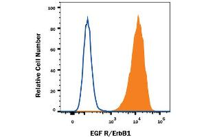 Flow Cytometry (FACS) image for anti-EGFR antibody (Epidermal Growth Factor Receptor) (AA 25-645) (ABIN4899925)