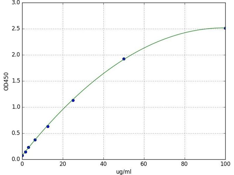 Glutamyl Aminopeptidase (Aminopeptidase A) (ENPEP) ELISA Kit