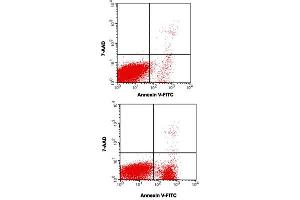 Image no. 1 for Annexin V-FITC/7-AAD Apoptosis Kit (ABIN5596087)