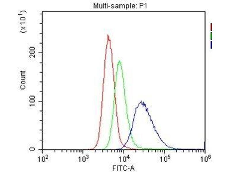 Flow Cytometry (FACS) image for anti-CD40 Molecule, TNF Receptor Superfamily Member 5 (CD40) (AA 20-193) antibody (ABIN4886526)