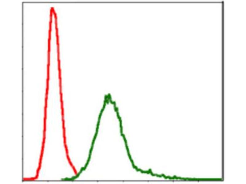 Flow Cytometry (FACS) image for anti-BIRC5 antibody (Baculoviral IAP Repeat-Containing 5) (ABIN1845166)