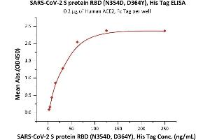 Image no. 1 for SARS-CoV-2 Spike S1 (Asn354Asp-Mutant), (Asp364Tyr-Mutant), (RBD) protein (His tag) (ABIN6952634)