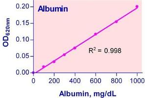 Image no. 1 for BCG Albumin Assay Kit (ABIN1000254)