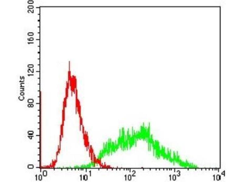 Flow Cytometry (FACS) image for anti-Villin 1 (VIL1) antibody (ABIN4365299)