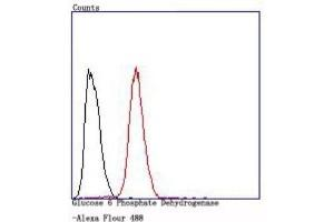 Flow Cytometry (FACS) image for anti-Glucose-6-Phosphate Dehydrogenase (G6PD) (AA 1-300) antibody (ABIN5950820)