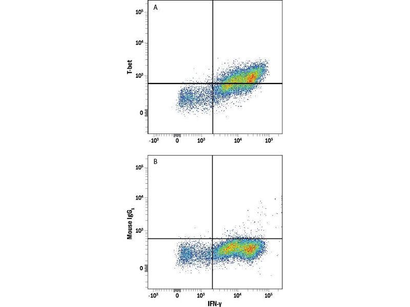 Flow Cytometry (FACS) image for anti-T-Bet (AA 326-535) antibody (Alexa Fluor 488) (ABIN4897377)