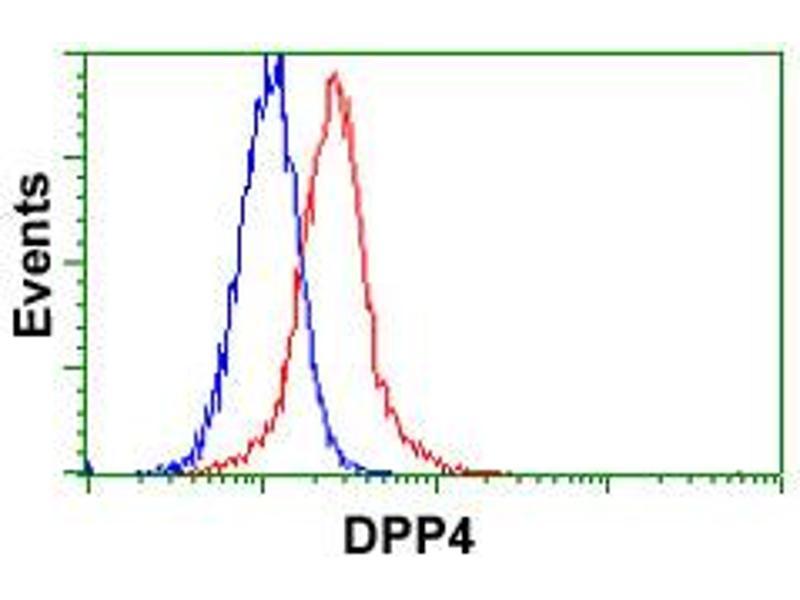 Image no. 4 for anti-Dipeptidyl-Peptidase 4 (DPP4) antibody (ABIN5576789)