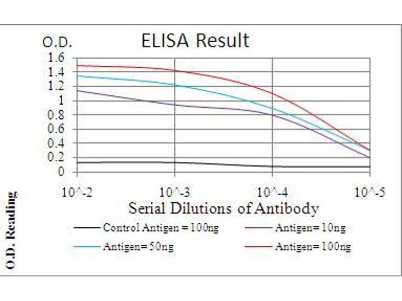 ELISA image for anti-Phospholipase C gamma 2 (PLCG2) (AA 826-985) antibody (ABIN5542312)