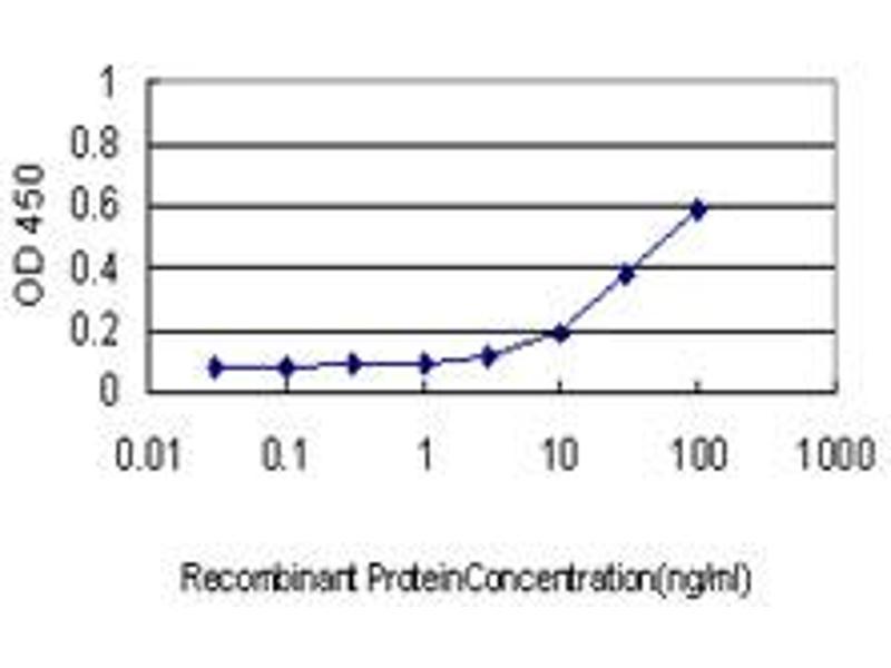ELISA image for anti-Tripeptidyl Peptidase I (TPP1) (AA 195-305) antibody (ABIN393313)