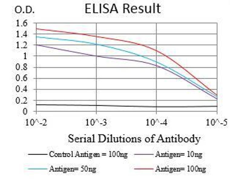 ELISA image for anti-EGFR antibody (Epidermal Growth Factor Receptor) (AA 693-893) (ABIN1724889)