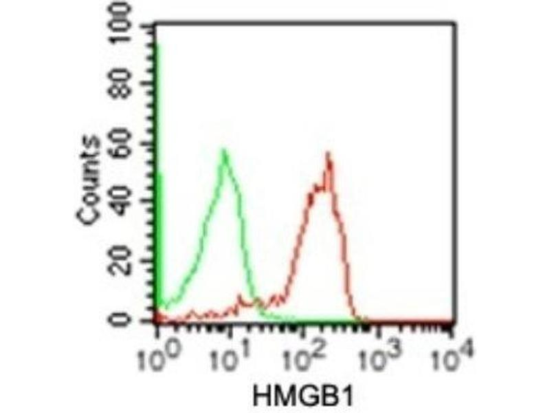 Flow Cytometry (FACS) image for anti-High-Mobility Group Box 1 (HMGB1) (A Box Domain), (AA 9-79), (full length) antibody (ABIN4319340)