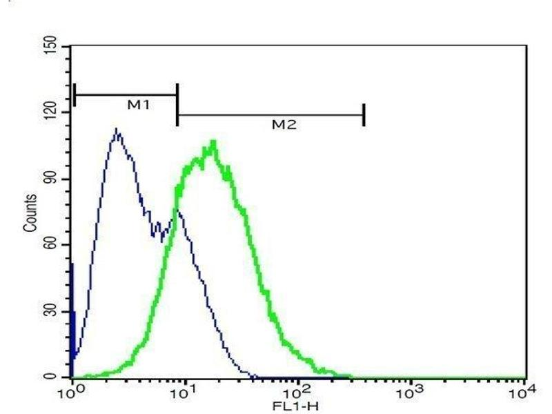 Flow Cytometry (FACS) image for anti-EPH Receptor A7 (EPHA7) (AA 203-253) antibody (ABIN722005)