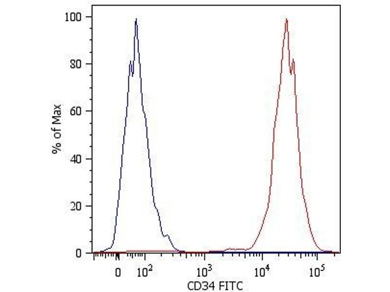 Image no. 1 for anti-CD34 Molecule (CD34) antibody (FITC) (ABIN94079)