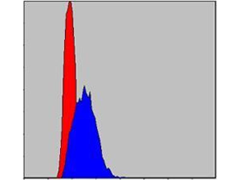 Flow Cytometry (FACS) image for anti-Jun Proto-Oncogene (JUN) antibody (ABIN968994)