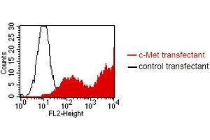 Flow Cytometry (FACS) image for anti-Met Proto-Oncogene (MET) antibody (ABIN1381745)