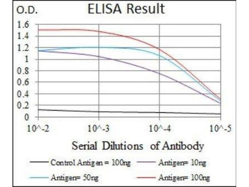 ELISA image for anti-E2F Transcription Factor 1 (E2F1) antibody (ABIN4306767)