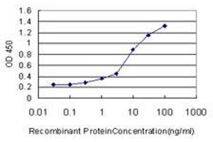 Image no. 1 for anti-Mediator Complex Subunit 1 (MED1) (AA 1391-1490) antibody (ABIN562335)
