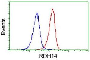 Image no. 1 for anti-Retinol Dehydrogenase 14 (All-Trans/9-Cis/11-Cis) (RDH14) antibody (ABIN1500656)