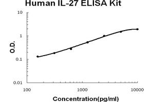 Image no. 1 for Interleukin 27 (IL27) ELISA Kit (ABIN6720110)