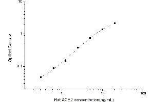 Image no. 1 for Angiotensin I Converting Enzyme 2 (ACE2) ELISA Kit (ABIN6963302)