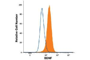 Flow Cytometry (FACS) image for anti-Brain-Derived Neurotrophic Factor (BDNF) (AA 129-247) antibody (ABIN4899236)