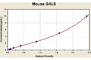 Image no. 1 for Lectin, Galactoside-Binding, Soluble, 8 (LGALS8) ELISA Kit (ABIN1115031)