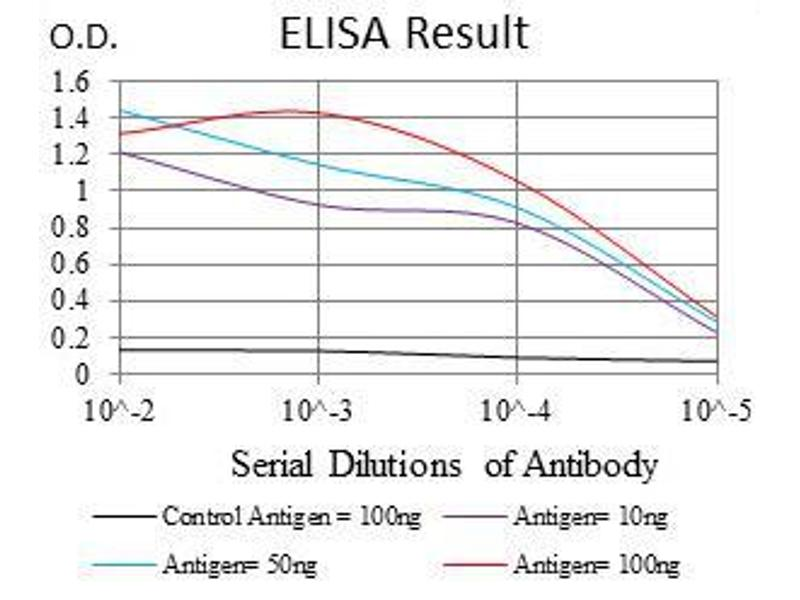 ELISA image for anti-Glucose-6-Phosphate Dehydrogenase (G6PD) antibody (ABIN969162)