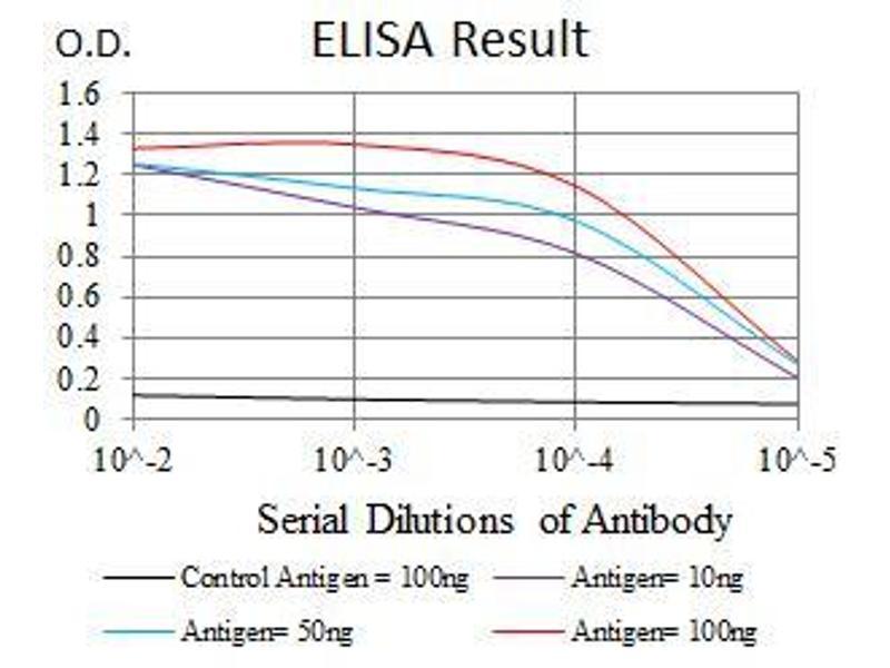 ELISA image for anti-Matrix Metallopeptidase 3 (Stromelysin 1, Progelatinase) (MMP3) antibody (ABIN969539)