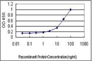 Image no. 1 for anti-Mitogen-Activated Protein Kinase 9 (MAPK9) (AA 1-425) antibody (ABIN782436)